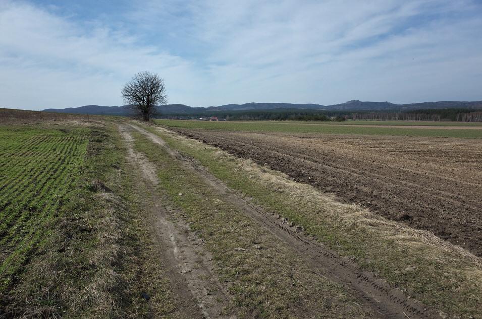 okolice Kroczyc