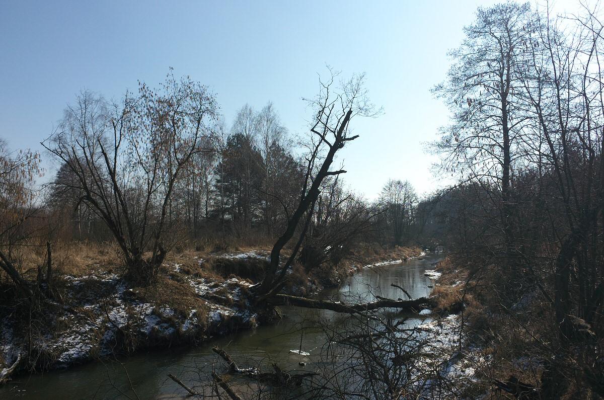 Dolina Białki Lelowskiej