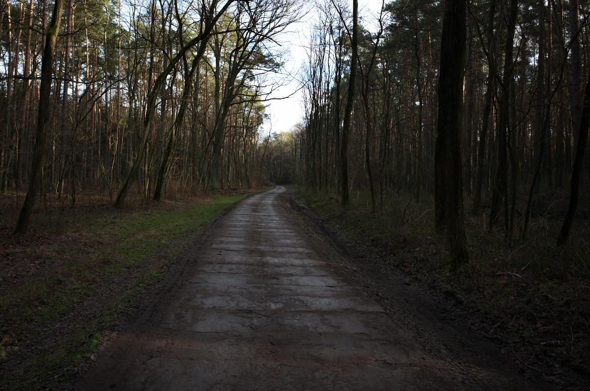 Okolice Łazów