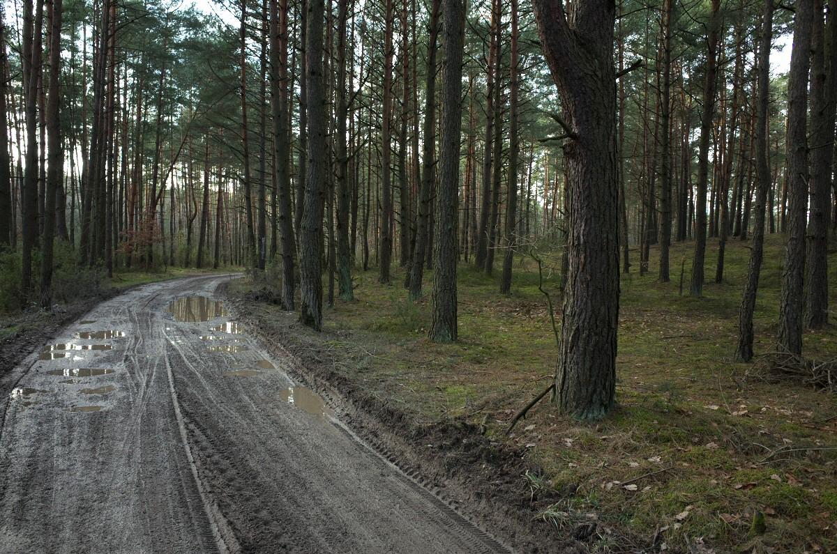 Okolice Łęczna