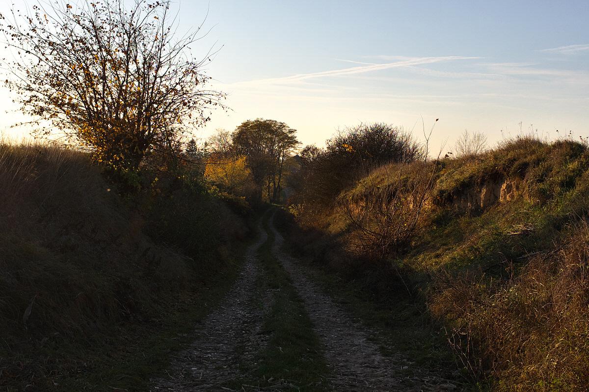 Dolina Nidzicy