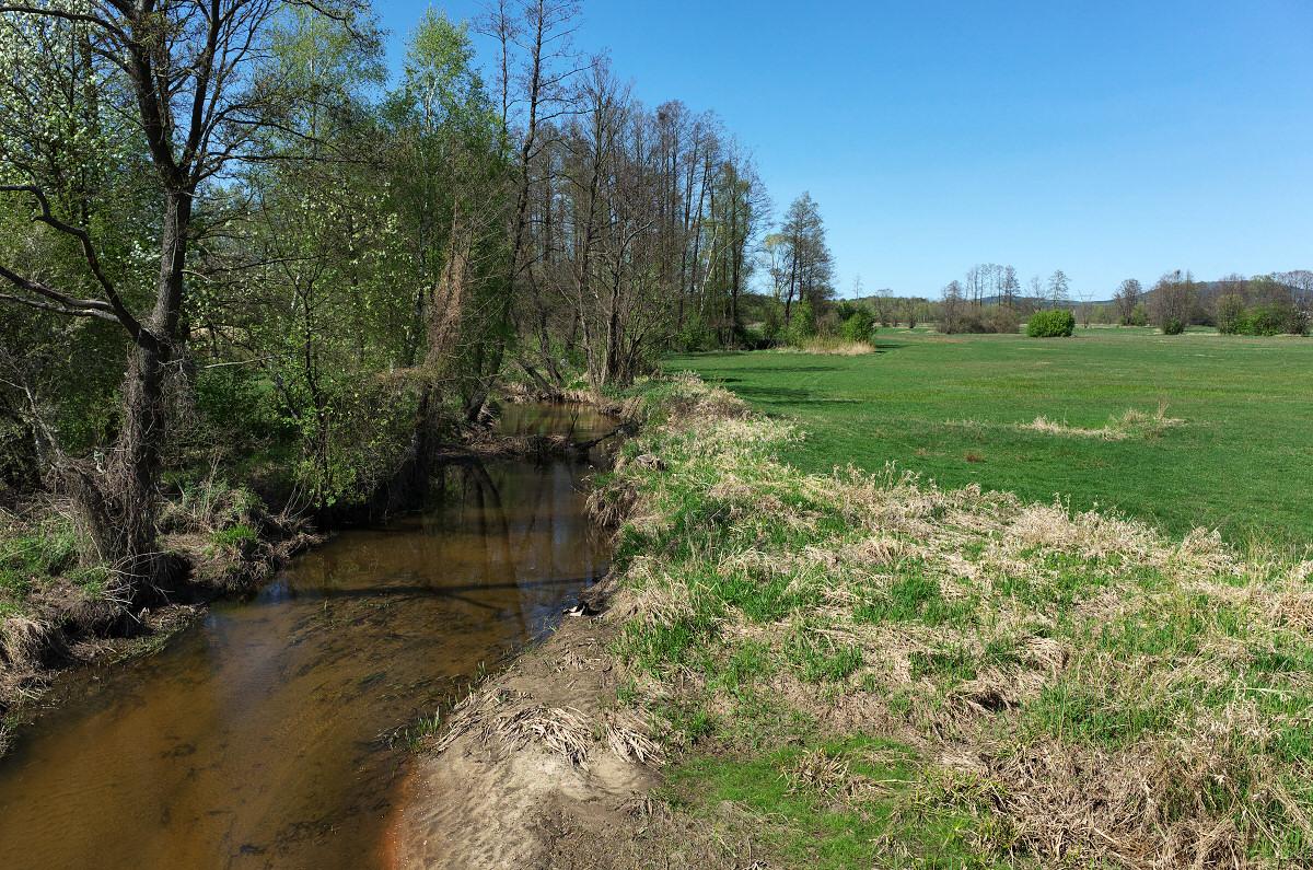 Wierna Rzeka