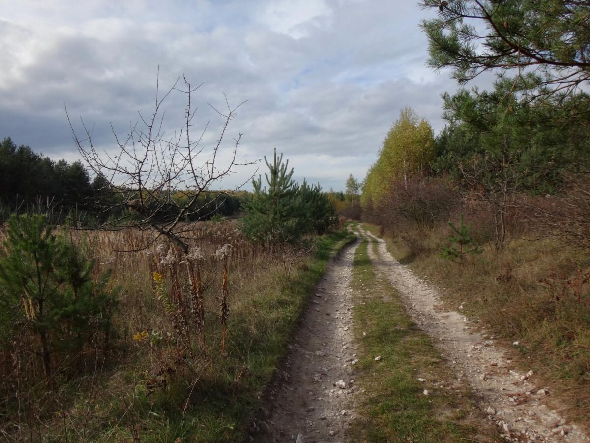okolice Ryczowa