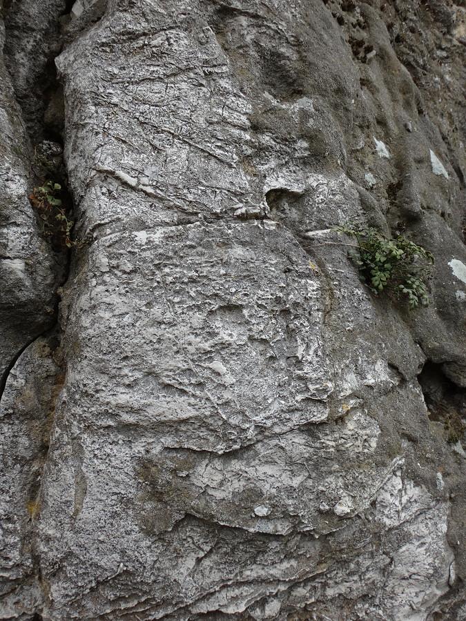 Kamieniołom Janina