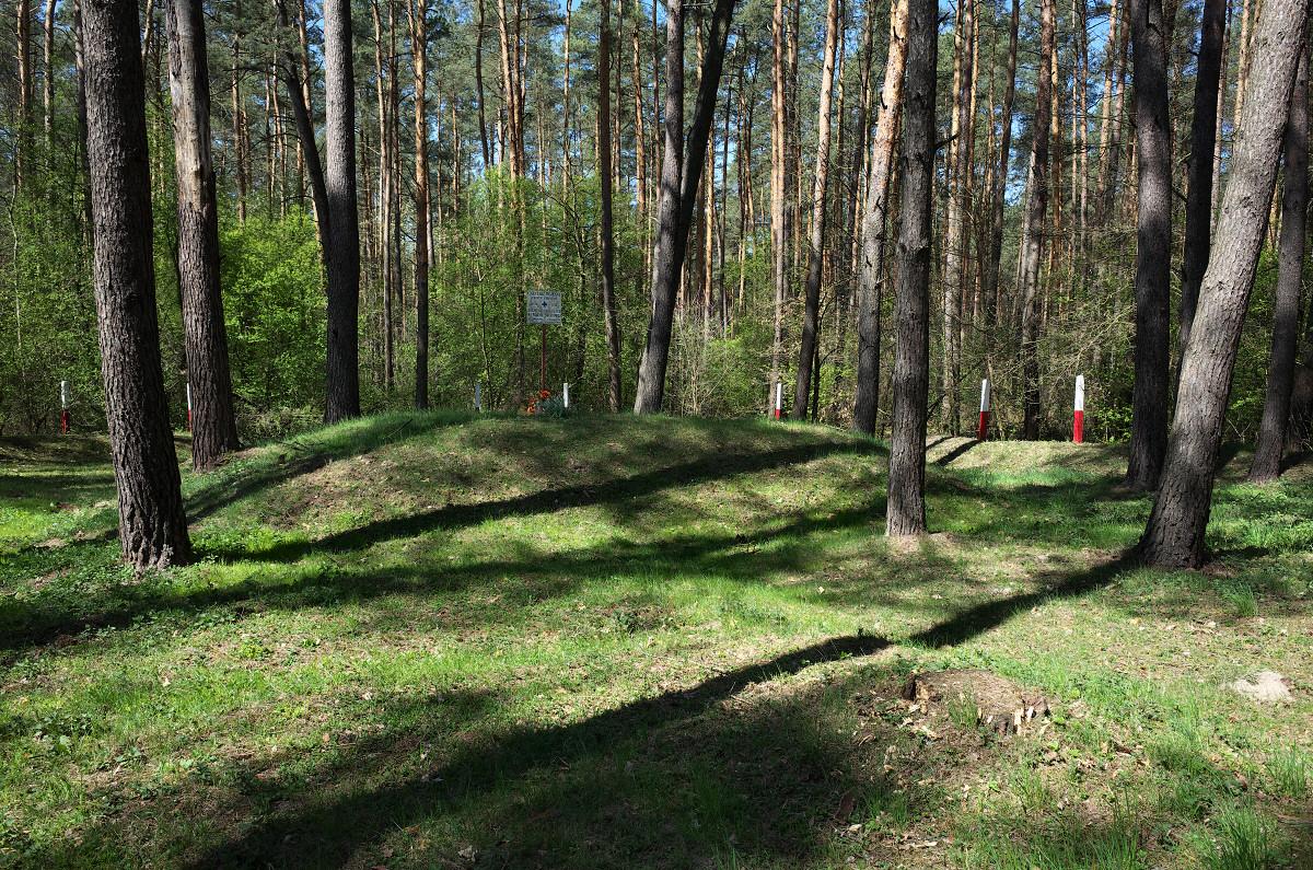 Cmentarz wojenny 1914-1915