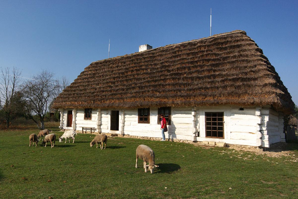 Muzeum Wsi Kieleckiej, skansen w Tokarni