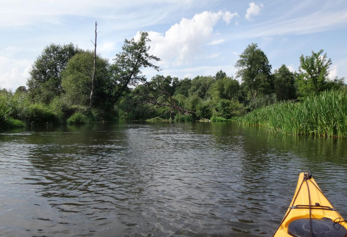Spływ Wartą w okolicy Ważnych Młynów