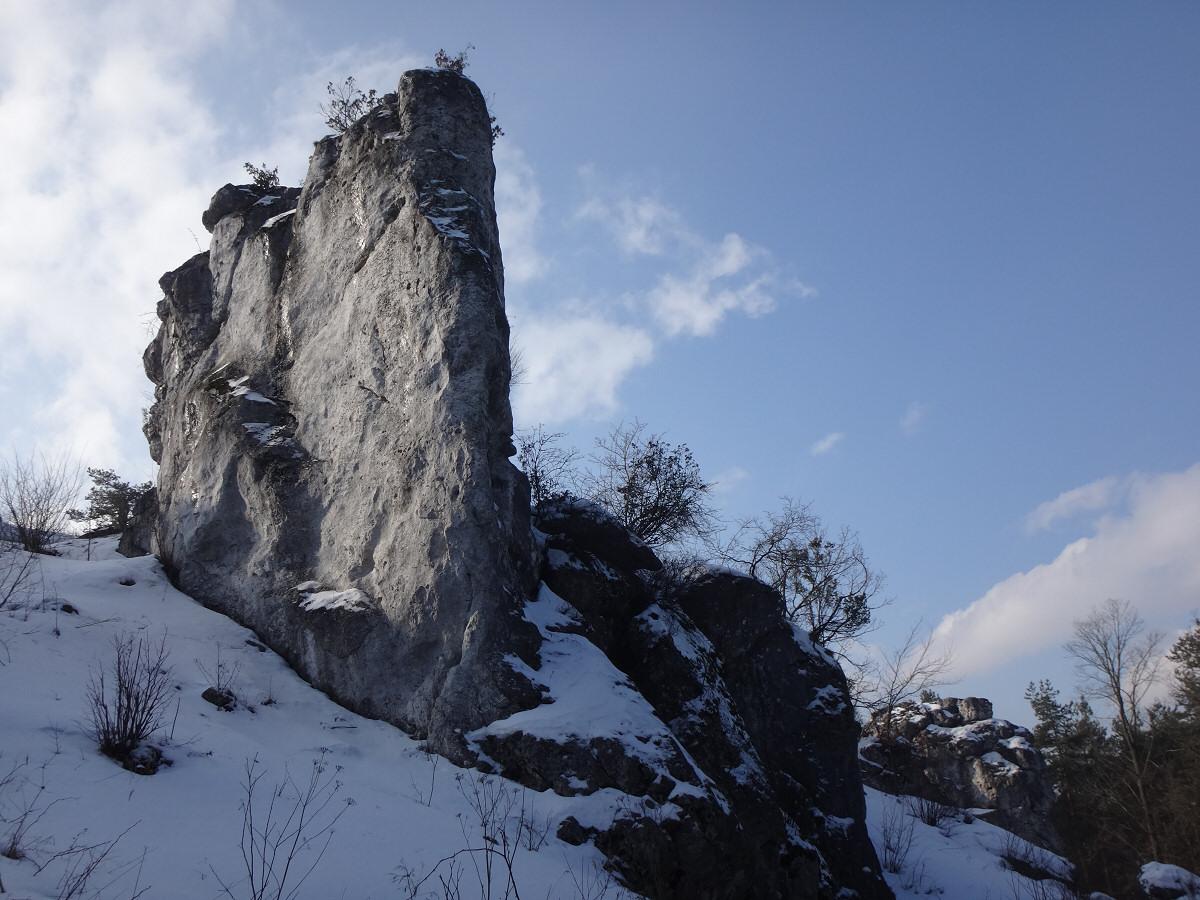 Góra Rez. Góra Zborów