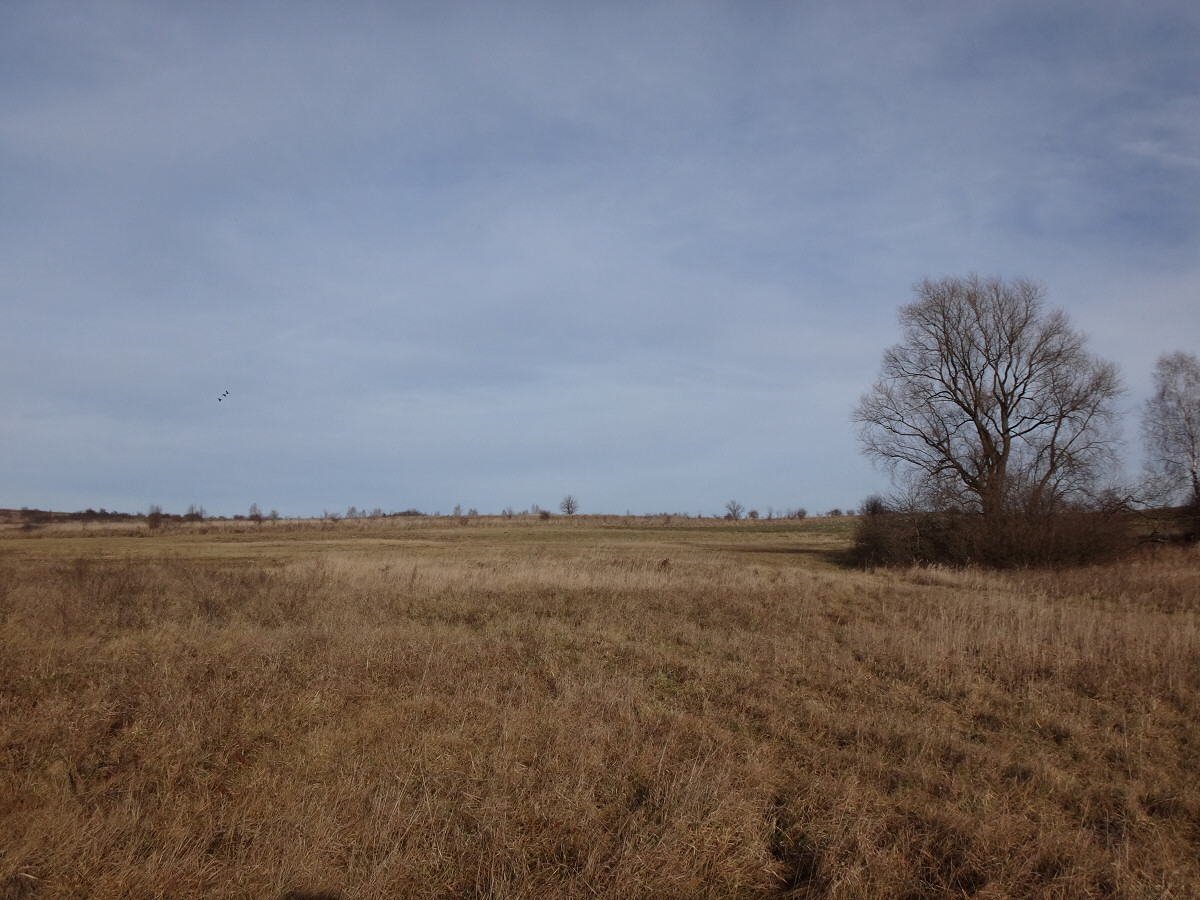 okolice Włodowic