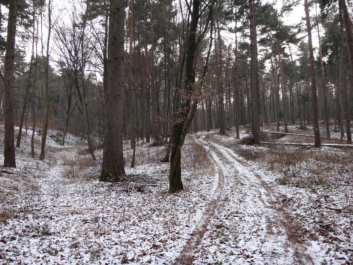 okolice Mokrusa