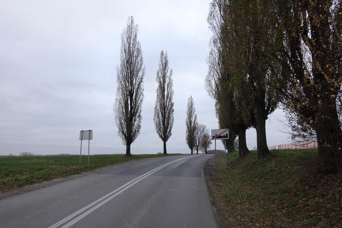 Tomiszowice