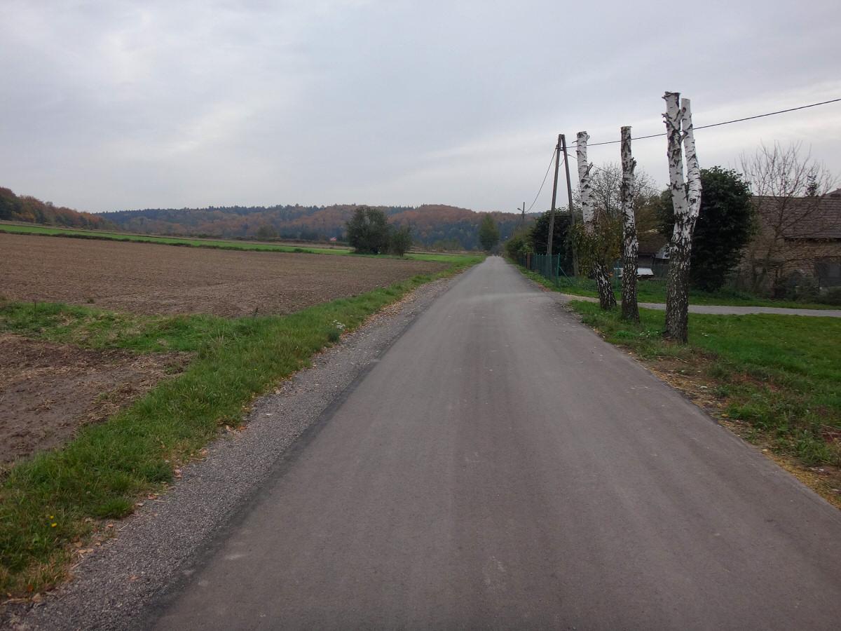 Buczyny w Szypowicach