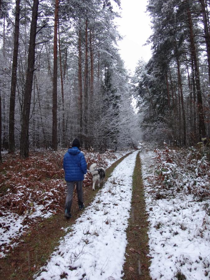 Wzgórza Skała i Bukowiec k/ Huty Szklanej