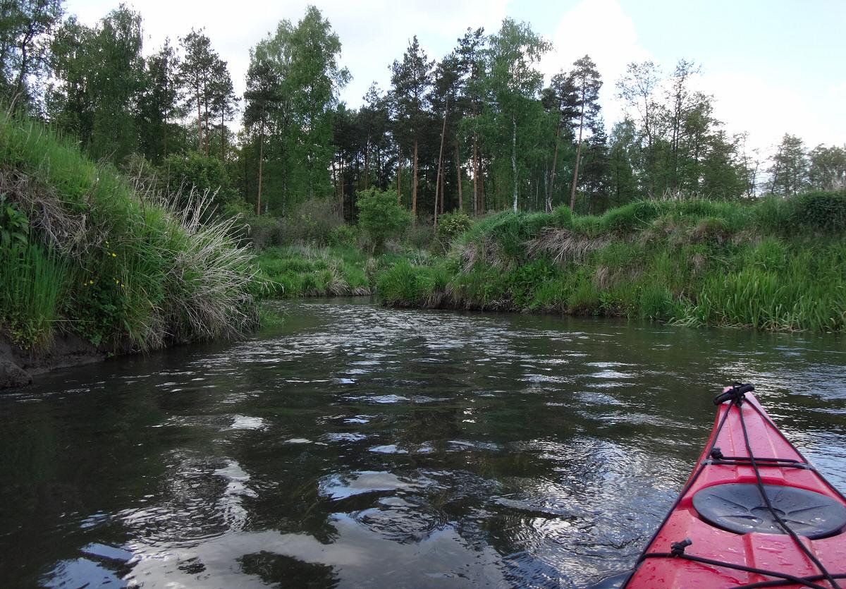 Spływ kajakowy Pilicą od Szczekocin