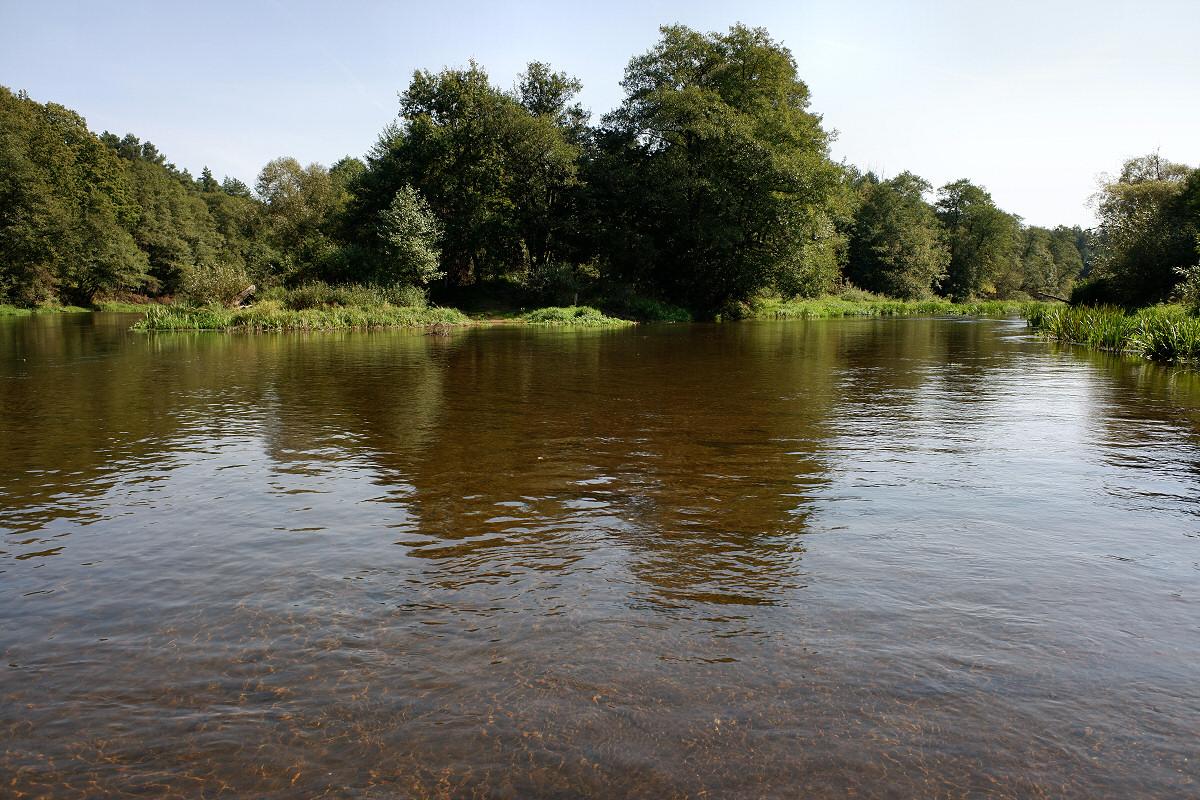 Spływ Liswartą, zapraszamy na www.kajakiempopilicy.pl