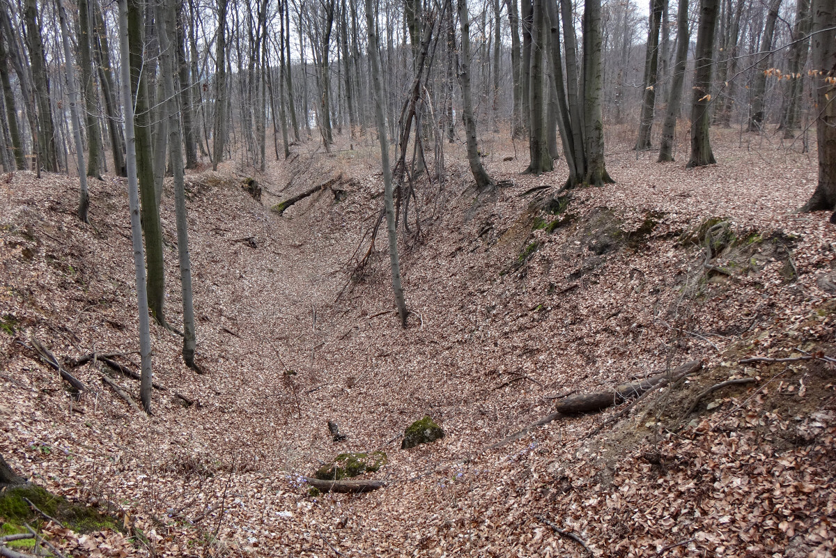 Stołowa Góra, Jaroszowiec