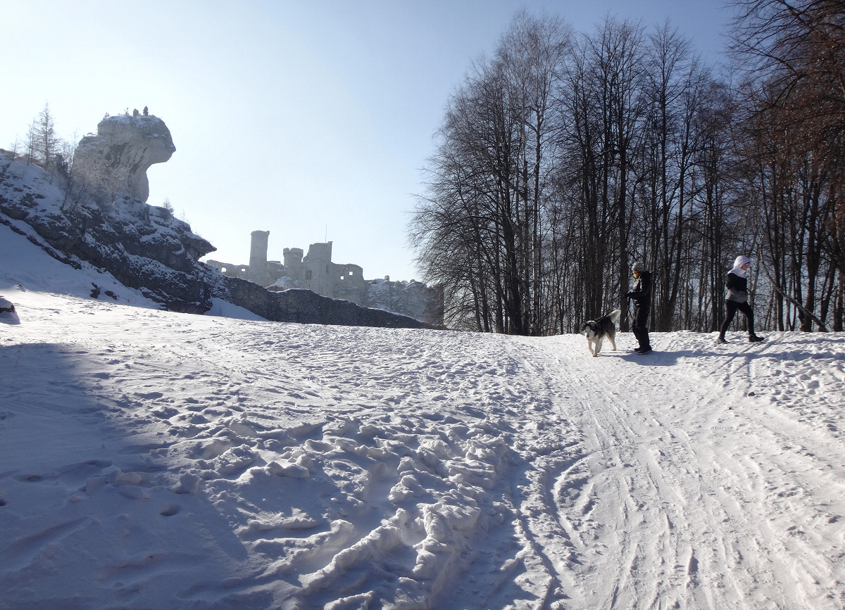 Podzamcze, Góra Janowskiego