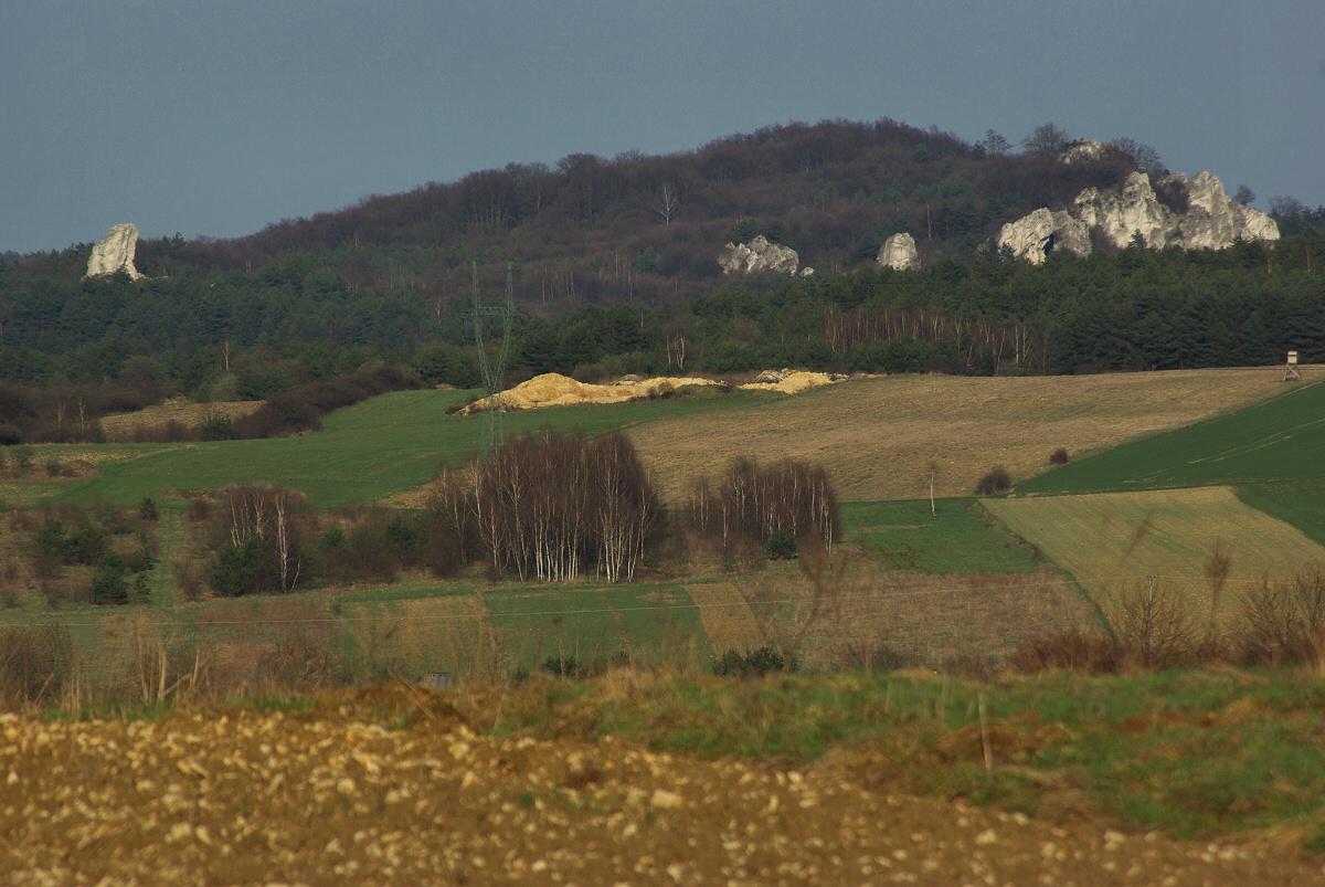 Góra Włodowska