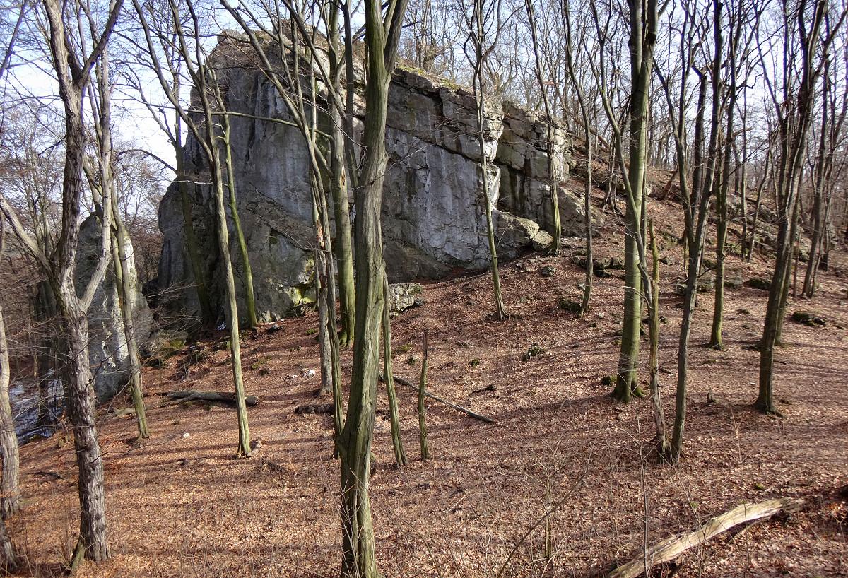 rezerwat Zielona Góra
