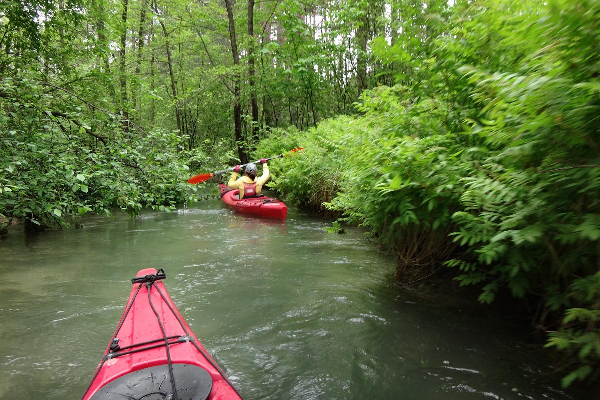 Spływ kajakowy Sztołą