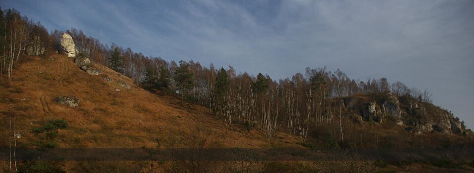 Jura Krakowsko - Częstochowska